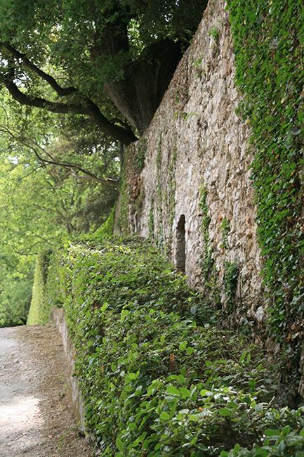 jardin d albertas 13320 bouc-bel-air mur de pierre